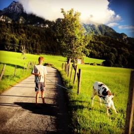 Wes Anderson in Tirol